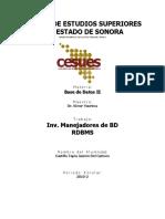 Inv. Manejadores de RDBMS