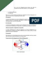 MARCO TEÓRICO Ciclo Basico Conclusiones Cuestionario