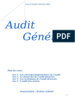 cours_audit_g_n_ral