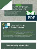 Cuotas-Obrero-Patronales