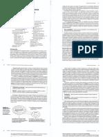 Ritchey Cap. 2 Organización de Los Datos [2008]