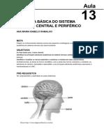 Sistema Nervoso Central e Periférico Elementos de Anatomia Humana