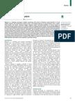 Functional MRI of Migraine (2015)