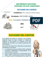 Dictamen Del Auditor