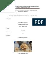Informe Cuenca Hidrografica - Canta - Rio Anasmayo
