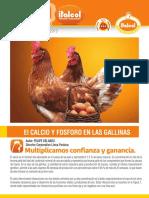Info_Postura_Metabolismo_de_Calcio.pdf