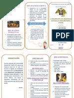 Tríptico de La Diversificación y Las Adaptaciones Curriculares
