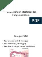 (K15) Perkembangan Morfologi Dan Fungsional Janin ANISYA