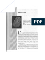 Capitulo 1 Introducción.pdf