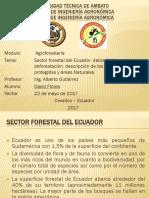 Sector Forestal Del Ecuador, Datos de La Deforestación, Descripción de Las Áreas Protegidas y Áreas Naturales.