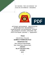TESIS 03-08-2017.pdf