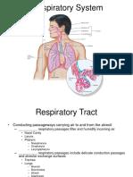 Unit 10 Respiratory Anatomy Student