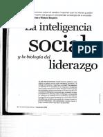 La Inteligencia Social y Biolog a Del Liderazgo