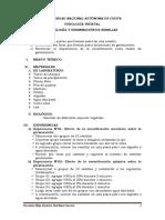 PRÁCTICA N°09-FV