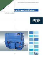 WEG Three Phase Induction Motors Master Line 50019089 Brochure English
