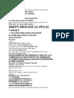 ANCA LELIA LORICZ Aspecte introductive privind procesul penal şi dreptul procesual penal 1.docx