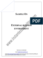Sample Report on External Business Environment By Instant Essay Writing