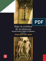 Paso_bajo La Sombra de La Historia