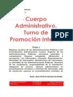 133260-Tema 1-C. Admin-PI-Conv-2016
