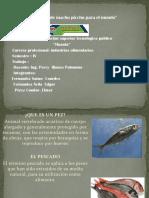 Inspeccion en Pescados y productos hidrobiológicos