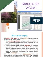 Marca de Agua Y Firma Electrónica.pptx.pptx