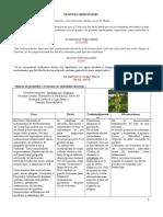 Plantas medicinales.doc