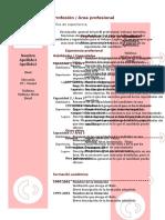 modelo-curriculum-vitae-combinado.doc