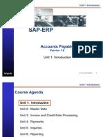 SAP Accounts Payable Introduction Info