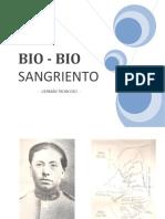 Bío-Bío Sangriento.pdf