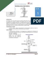 GUIA 1 TERMINOLOGIA.pdf