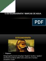 Esteganografía y Marcas de Agua.pptx