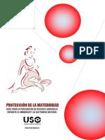 Uso Murcia.guia Prevención de Riesgos Durante Embarazo y Lactancia
