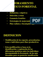 2. antecedentes PMGF