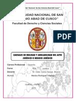 Nulidad y Anulabilidad del acto jurídico en la legislación peruana