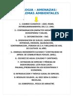 Amenazasmecanismos de Desarrollo Limpio Aa (2)