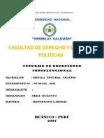 Expediente constitucional.docx