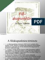 Dr Eory Ajandok Fulakupunktura