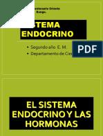Hormonas Sistema Endocrino