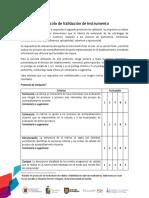 Protocolo de Validación de Instrumento