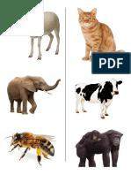 animales_imprimir.docx