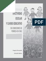 201201161715160.efectividad.pdf