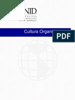 Cultura Organizacional Pte II