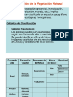 Clasificación de La Vegetación