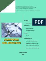Auditoria de Efectivo Informe