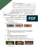 Evaluación Parcial  Ciencias Naturales