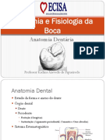 anatomiadental-130809100744-phpapp01.pptx