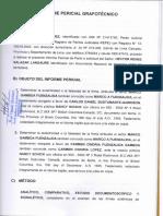 Peritaje en PDF (Bem)
