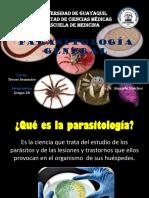 282226445-Parasitologia-General.pptx