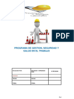 Programa-Salud-Ocupacional.pdf