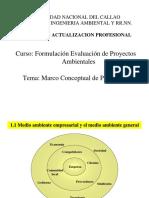 Proyectos (1ra Sesión I)